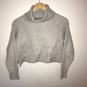 Wilfred Free/Aritzia Cropped Turtleneck Sweater